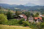 Agicultural landscape of Slovenian farms and homes in the Kozjansko Regional Park, on 24th June 2018, in Virstanj, Slovenia.