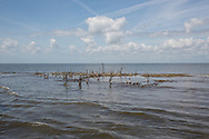 March 31, 2015,  Five years after the BP oil spill,