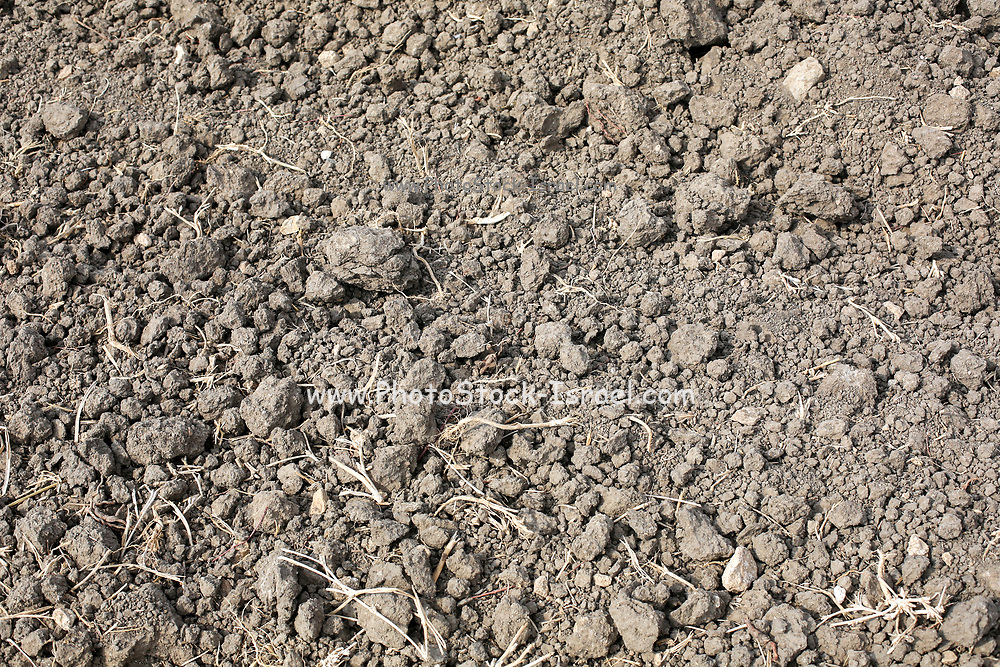 Freshly tilled soil in an agricultural field