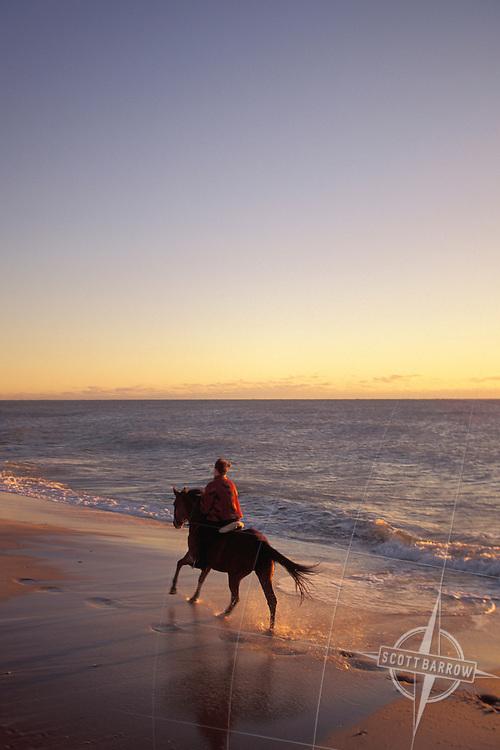 Horseback riding on beach at sunset