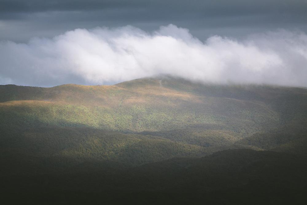 A rare sunlit patch at cloud covered Tin range, The Southern Circuit, Stewart Island / Rakiura, New Zealand Ⓒ Davis Ulands | davisulands.com
