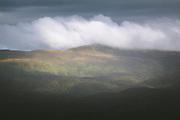 A rare sunlit patch at cloud covered Tin range, The Southern Circuit, Stewart Island / Rakiura, New Zealand Ⓒ Davis Ulands   davisulands.com