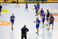 Players of RK Celje Pivovarna Lasko before the handball match between RK Celje Pivovarna Lasko (SLO) and Prvo Plinarsko drustvo Zagreb (CRO) in 1st round, group B of EHF Champions League 2016/17 on September 24, 2016 in Arena Zlatorog, Celje, Slovenia. Photo by Ziga Zupan / Sportida