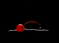 Image of a cherry sitting in a puddle with a drop on the stem.
