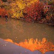 Brenned Fitzgerald casts into the reflections along the banks of the Eagle River in Wolcott Colorado.