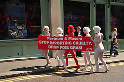 © licensed to London News Pictures. London, UK  21/04/11.Protestors from PETA demonstrate outside Fortnum and Mason in Piccadilly London against the sale of Fois Gras.  Please see special instructions for usage rates. Photo credit should read ALAN ROXBOROUGH/LNP