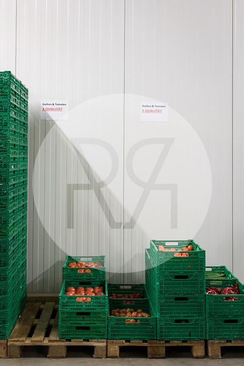 SCHWEIZ - NIEDERBIPP - Tomaten 2. Qualität in den Kühlräumen der Bösiger Gemüsenkulturen AG - 21. Juni 2019 © Raphael Hünerfauth - http://huenerfauth.ch