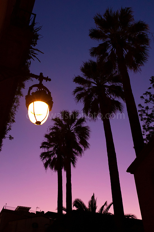 "Palm trees and streetlamp. Sunset, above Carrer d'Elisabets, El Raval, Barcelona This mage can be licensed via Millennium Images. Contact me for more details, or email mail@milim.com For prints, contact me, or click ""add to cart"" to some standard print options."