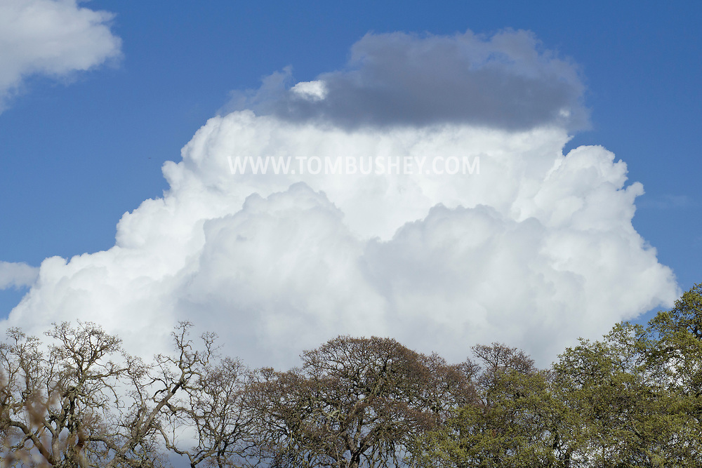 Citrus Heights, California - Clouds in the sky on March 6, 2014.