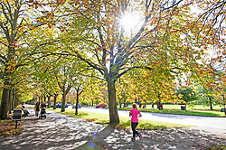 ©Licensed to London News Pictures 15/10/2019<br /> Greenwich,UK. People out and about in Greenwich Park, Greenwich, London this afternoon enjoying the sunny autumnal weather. Photo credit: Grant Falvey/LNP