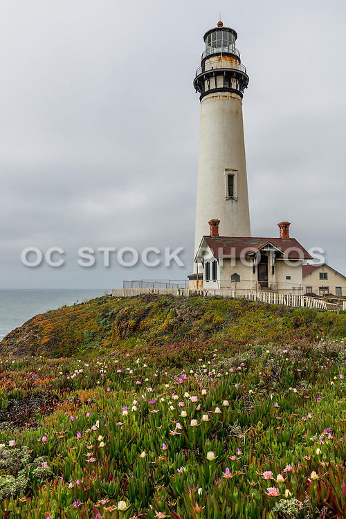Pigeon Point Lighthouse State Historic Park San Francisco Bay