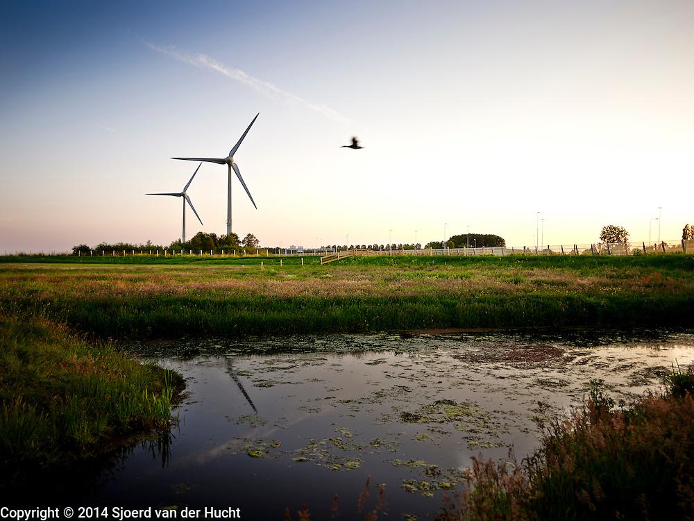 Windturbine, Zoeterwoude 2014 - Wind turbine, Netherlands 2014