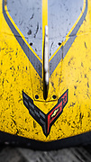 January 30-31, 2021. IMSA Weathertech Series. Rolex Daytona 24h:  #3 Corvette Racing Corvette C8.R, GTLM: Antonio Garcia, Jordan Taylor, Nicky Catsburg detail