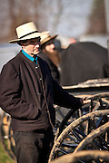 Amish man watches the auction during the Annual Mud Sale to support the Fire Department  in Gordonville, PA.