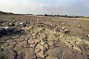 Nederland, Nijmegen,4-9--2003Door de lage waterstand in de Waal zijn de ruimten tussen de kribben droog komen te liggen. Klei in de bodem laat scheuren zien. Schepen kunnen niet volbeladen varen.  . De Waal is het Nederlandse deel van de Rijn en de belangrijkste vaarroute van en naar Rotterdam en Duitsland . Aftakkingen zijn de minder bevaren Neder Rijn en IJssel.Foto: Flip Franssen/Hollandse Hoogte