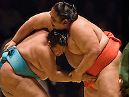 Toyonoshima (left) and Miyabiyama compete in the third round of Day 2 of Grand Sumo Tournament Los Angeles 2008, Los Angeles Sports Arena, Los Angeles, California