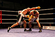 Boxen: Boxen im Norden, Hamburg, 06.20.2019<br /> Internationale Deutsche Meisterschaft: Sebastiano Lo Zito (GER) - Peter Orlik (HUN)<br /> © Torsten Helmke