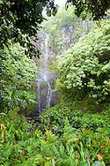 The road beyond Hana to Kaupo. Wialua Falls