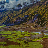 The Annapurna massif towers above barley field in the remote Manang Valley, Nepal.
