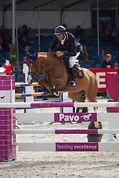 Maarse Dave (NED) - Apropos 'n Liefhebber<br /> KWPN Paardendagen 2011 - Ermelo 2011<br /> © Dirk Caremans