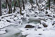 Bridalveil Creek in winter, Yosemite Valley, Yosemite National Park, California USA
