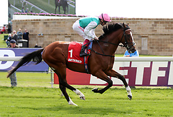 Crossed Baton ridden by Frankie Dettori goes to post