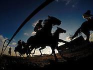 Kempton Races 180115