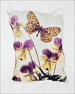 FLOWERPRESS BUTTERFLIES - Fritillary & violas - polaroid lift photo art print by photographer Paul E Williams. These rare and striking polaroid lift was taken iby Paul Williams in 1992 and was awarded a Polaroid European Final Art Award. .<br /> <br /> Visit our FINE ART PHOTO  PRINT COLLECTIONS for more wall art photos to browse https://funkystock.photoshelter.com/gallery-collection/Fine-Art-Photo-Prints-by-Photographer-Paul-Williams/C0000UM829OLMVv8