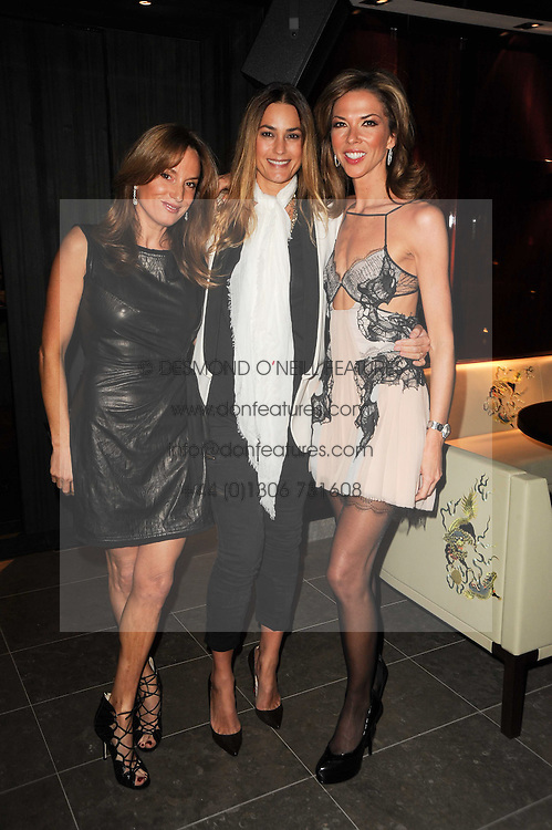 Left to right, EMILY OPPENHEIMER-TURNER, YASMIN LE BON and HEATHER KERZNER at a dinner to celebrate the work of Malaria No More UK held at Hakkasan Mayfair, 17 Bruton Street, London W1 on 16th November 2010.