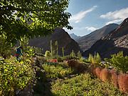 In Barchadev village, below Sarez Lake.