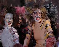 Cats Dress Rehearsal