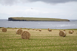 Various warning signs for personal safety,  Orkney; Scotland,