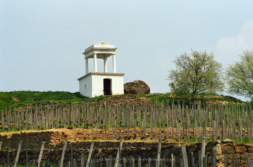 """The Disznoko winery in Tokaj: the vineyard, a watch tower and the rock that has given its name to the estate (Disznoko means """"pig's head"""" and the rock supposedly looks like one). The Disznók? winery is owned by AXA Millesimes, a French insurance company. Disznoko means pig's head since a big rock in the vineyard supposedly looks like that. The new winery is impressive and a vast amount of money has been invested. Credit Per Karlsson BKWine.com"""