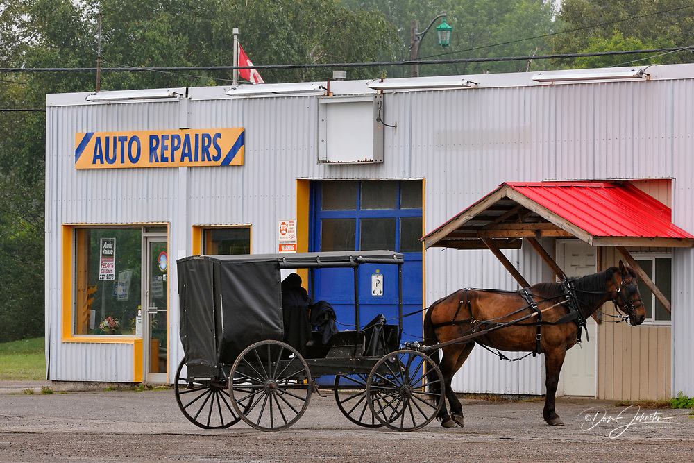 Mennonite horse and carriage parked in front of an auto repair shop, Iron Bridge, Ontario, Canada