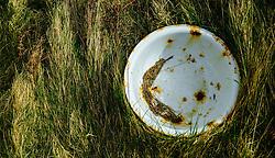Old wash basin at an abandoned croft house near Lochmaddy, North Uist, Outer Hebrides, Scotland<br /> <br /> (c) Andrew Wilson | Edinburgh Elite media