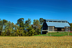 19 Oct 2015:  A large rustic frame structure barn stands near a road with some grain bins in the fall in Parke County Indiana.  The barn has a weather vane on the roof and a steel roof has replaced the original shakes.<br /> <br /> This image was produced in part utilizing High Dynamic Range (HDR) processes.  It should not be used editorially without being listed as an illustration or with a disclaimer.  It may or may not be an accurate representation of the scene as originally photographed and the finished image is the creation of the photographer.
