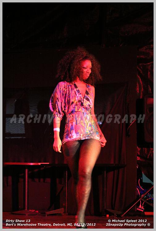 DETROIT, MI, FRIDAY, FEB. 10, 2012: Dirty Show 13, Honey Bunny Burlesque at Bert's Warehouse Theatre, Detroit, MI, 02/10/2012.  (Image Credit: Michael Spleet / 2SnapsUp Photography)