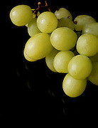 Green Grapes on black background