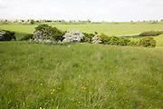 Durrington Walls neolithic settlement site, Amesbury, Wiltshire, England, UK