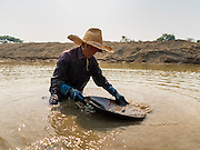 """01 APRIL 2016 - WANG NUEA, LAMPANG, THAILAND: A man throws aside rocks while he was panning for gold in the Mae Wang. Villagers in the Wang Nuea district of Lampang province found gold in the Mae Wang (Wang River) in 2011 after excavation crews dug out sand for a construction project. A subsequent Thai government survey of the river showed """"a fair amount of gold ore,"""" but not enough gold to justify commercial mining. Now every year when the river level drops farmers from the district come to the river to pan for gold. Some have been able to add to their family income by 2,000 to 3,000 Baht (about $65 to $100 US) every month. The gold miners work the river bed starting in mid-February and finish up by mid-May depending on the weather. They stop panning when the river level rises from the rains. This year the Thai government is predicting a serious drought which may allow miners to work longer into the summer. The 2016 drought has lowered the water level so much that the river is dry in most places and people can only pan for gold in a very short stretch of the river.      PHOTO BY JACK KURTZ"""