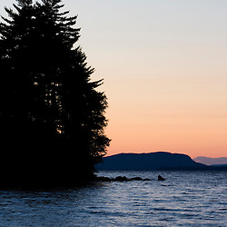 White Pines and Mount Kineo in the distance as seen from Sugar Island in Lily Bay.  Maine's Moosehead Lake.  Northern Forest.  Sunset.