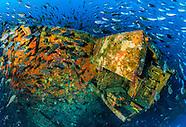 2013-2015 Rena shipwreck & Astrolabe Reef