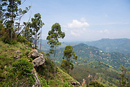 A young man and woman traveling in Sri Lanka enjoy the panoramic view from Ella Rock, a popular viewpoint on the outskirts of Ella, Sri lanka.