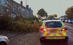 Fallen Tree Halts Traffic | Edinburgh | 11 September 2017