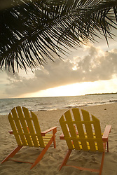 Two wood chairs under palm tree on beach by Caribbean Sea, Placencia, Stann Creek District, Belize