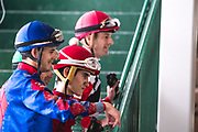 November 1-3, 2018: Breeders' Cup Horse Racing World Championships. Jockeys watch the previous race replay