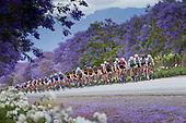 2015 Coronation Double Century Cycle Race