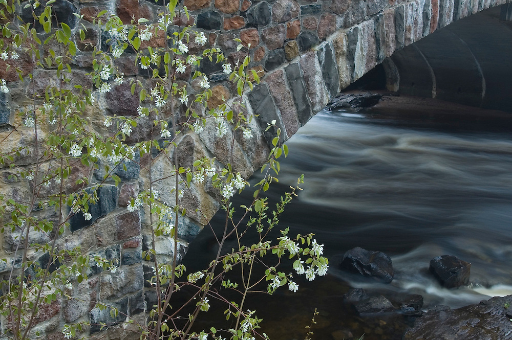 A stone bridge crosses the Eau Claire River at the Dells of the Eau Claire River County Park in Marathon County Wisconsin.