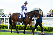 """Spiritulist ridden by David Probert and trained by David Evans in the Let's Play """"Four From The Top"""" / British Ebf Novice Median Auction Stakes race.  - Mandatory by-line: Ryan Hiscott/JMP - 01/05/2019 - HORSE RACING - Bath Racecourse - Bath, England - Wednesday 1 May 2019 Race Meeting"""