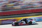 May 20, 2017: NASCAR Monster Energy All Star Race.  AUSTIN DILLON